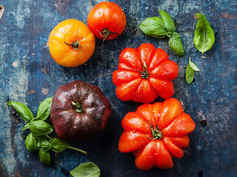 Food in Focus: Heirloom Tomatoes